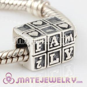925 Sterling Silver Family charm Beads fit European Beads